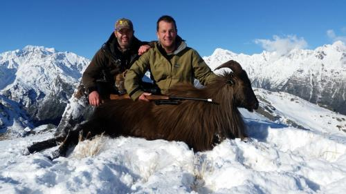 New Zealand Bull Tahr#huntnewzealandinfo@trophyhunting.co.nz