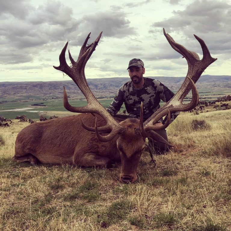 red stag hunting guides NZ South Island New Zealand
