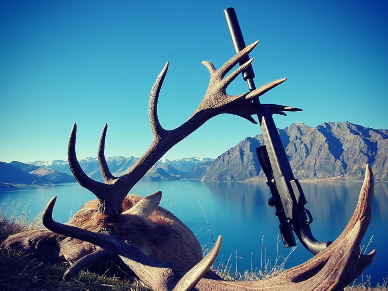new zealand red stag Guided Red Stag Hunting South Island New Zealand Southern Hunting Adventures e1590230886619
