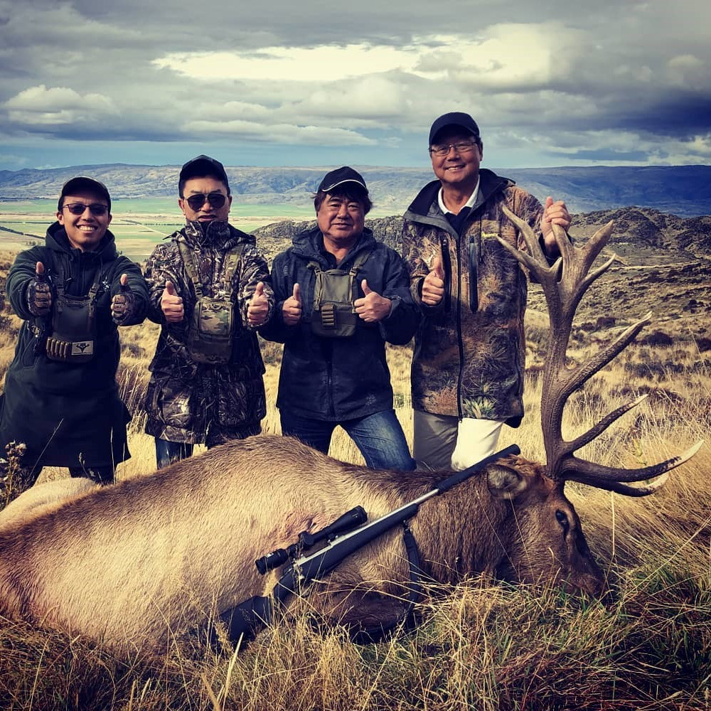 new zealand elk hunting outfitters nz