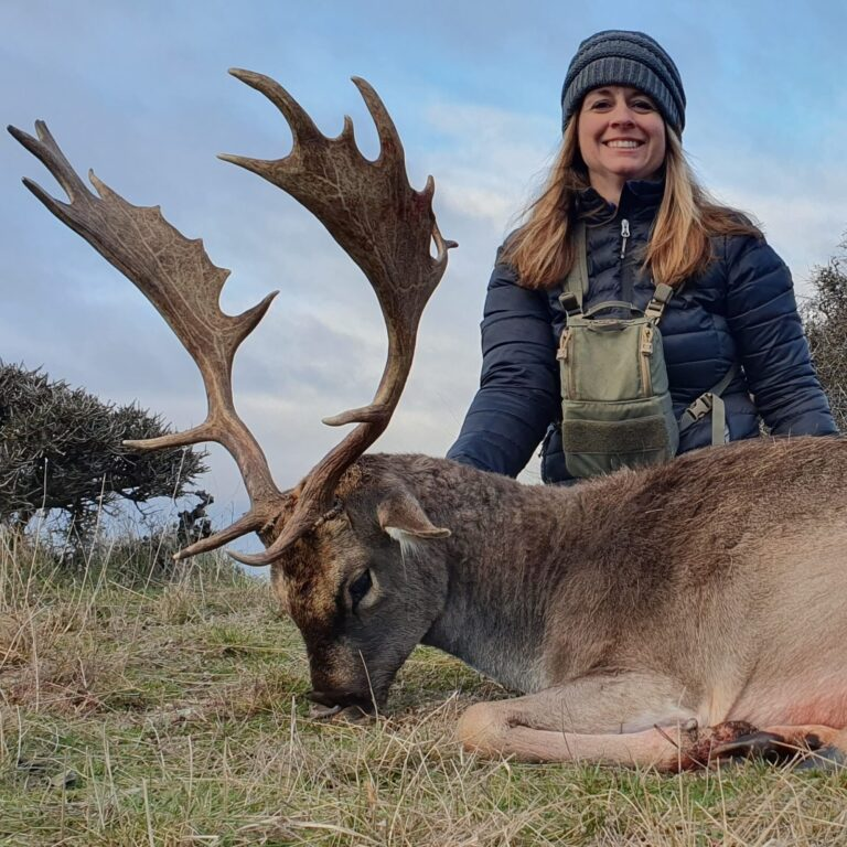 new zealand fallow deer guided hunting