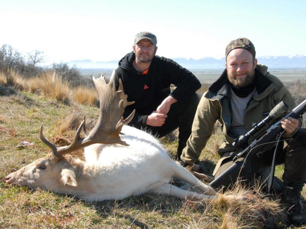 new zealand chamois Dunedin Queenstown New Zealand fallow deer buck guided hunt NZ