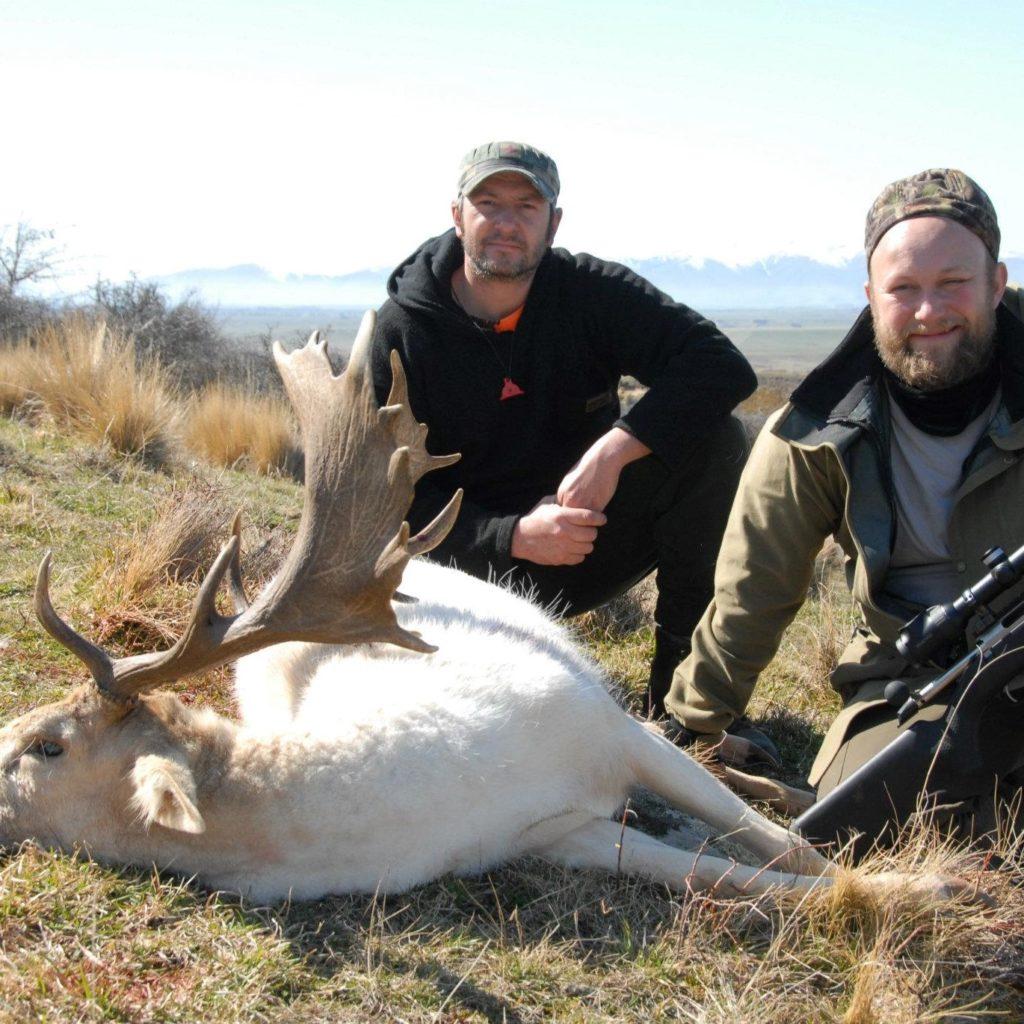 fallow deer hunt new zealand