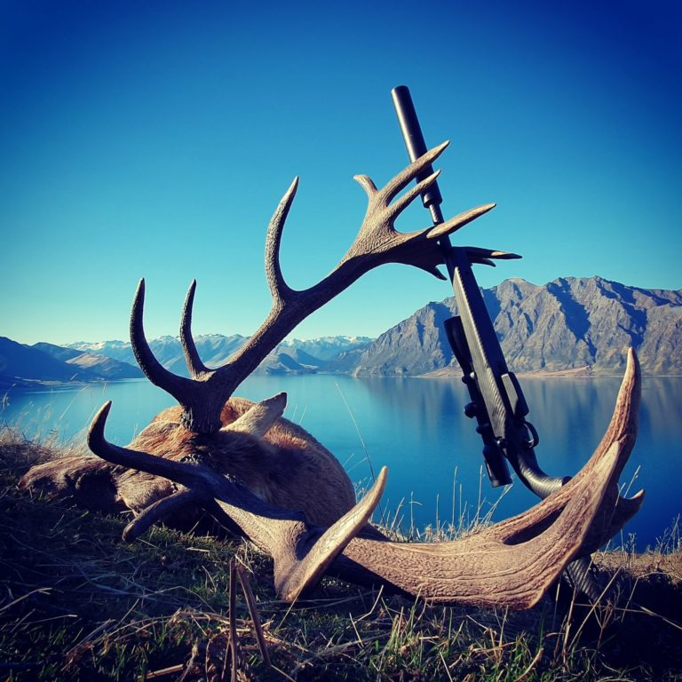 gun hunting New Zealand red stag NZ guided hunts