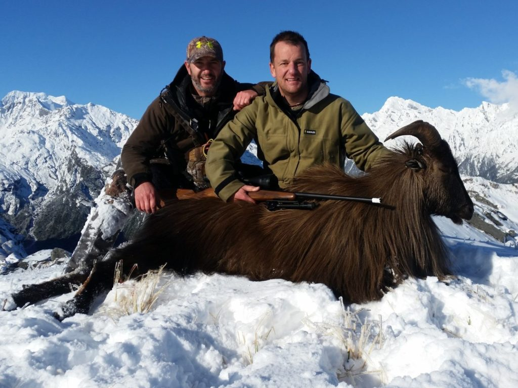 alpine chamois Queenstown New Zealand hunts nz hunting