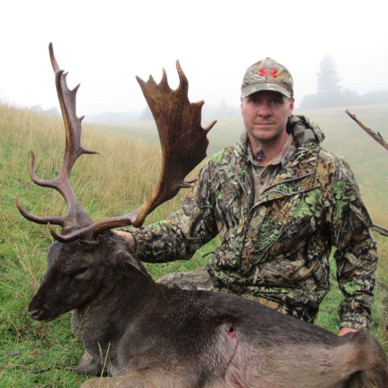 fallow buck hunt new zealand Queenstown fallow deer