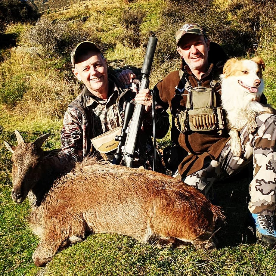 thar hunt new zealand tahr hunting