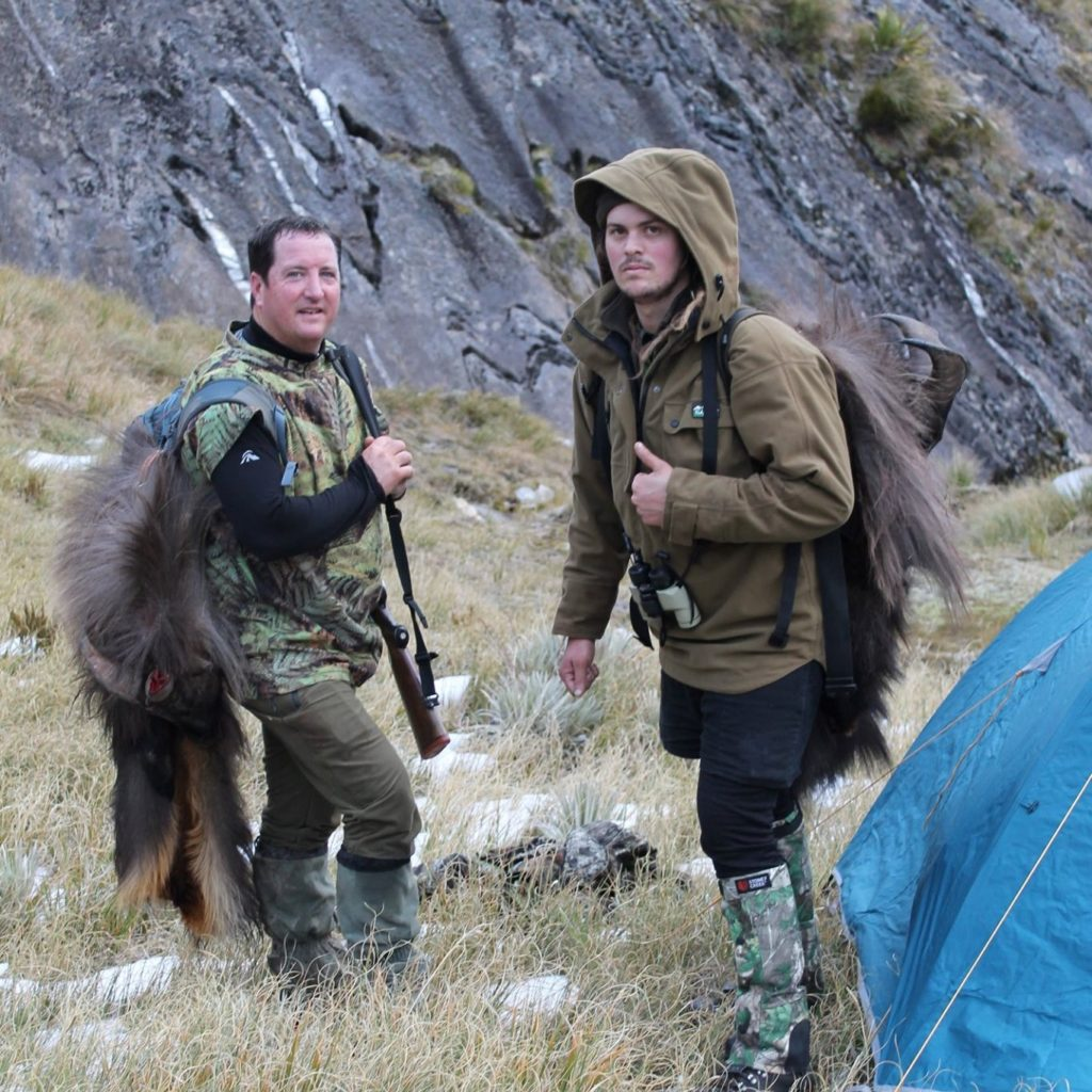 tahr hunting new zealand nz thar hunt