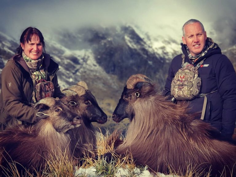 new zealand tahr hunting nz thar hunt