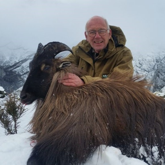 tahr hunt in new zealand guided hunts