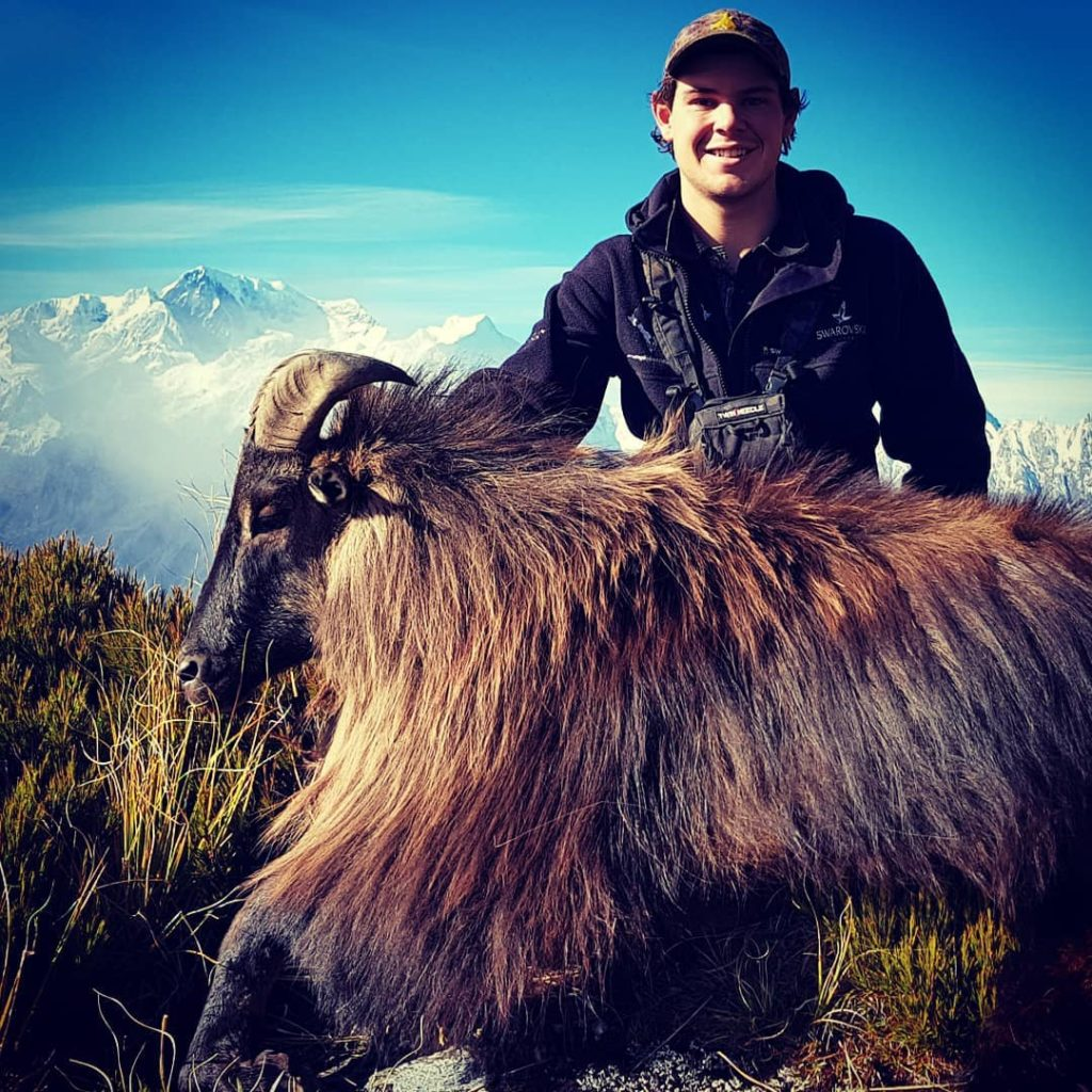 himalayan tahr hunting new zealand thar nz