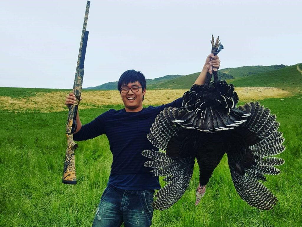 turkey hunting new zealand