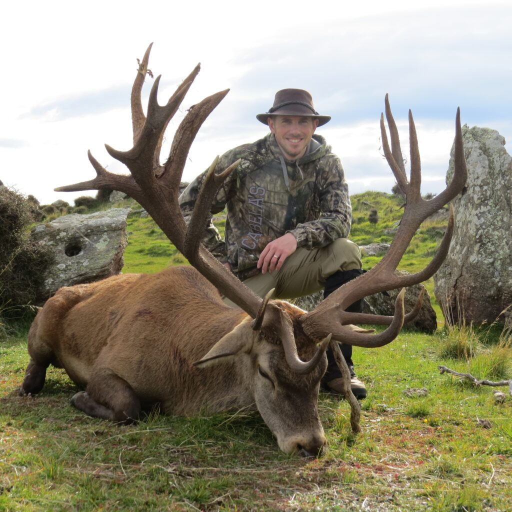 cheap new zealand red stag hunts