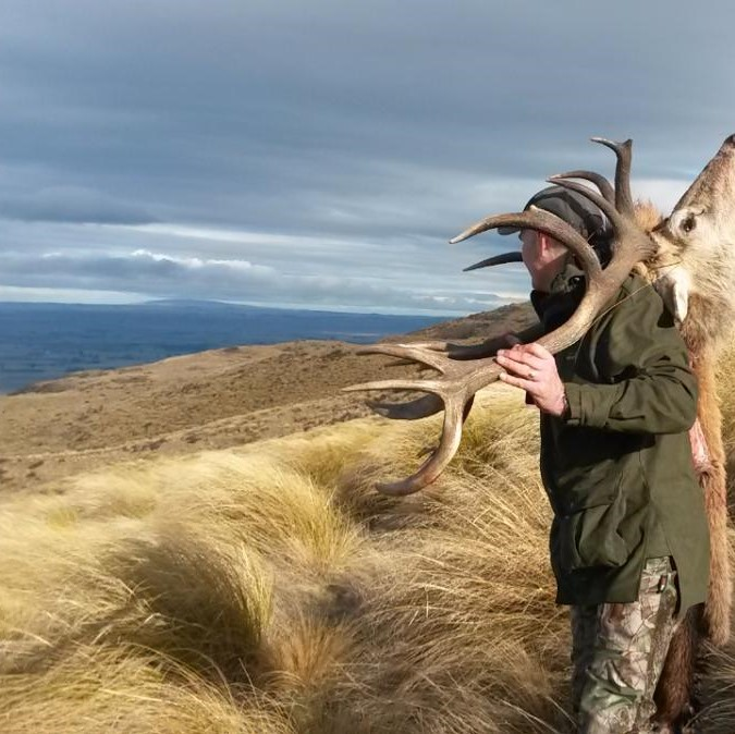 new zealand red stag hunts