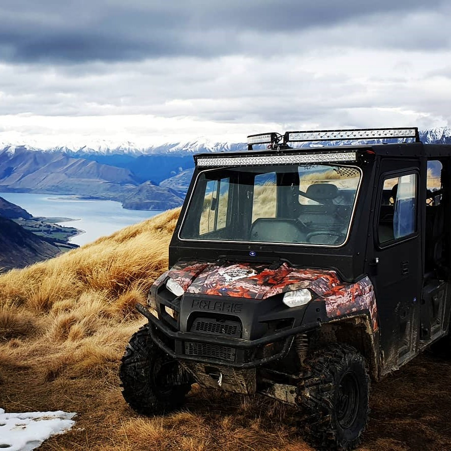 hunting in new zealand guided hunts