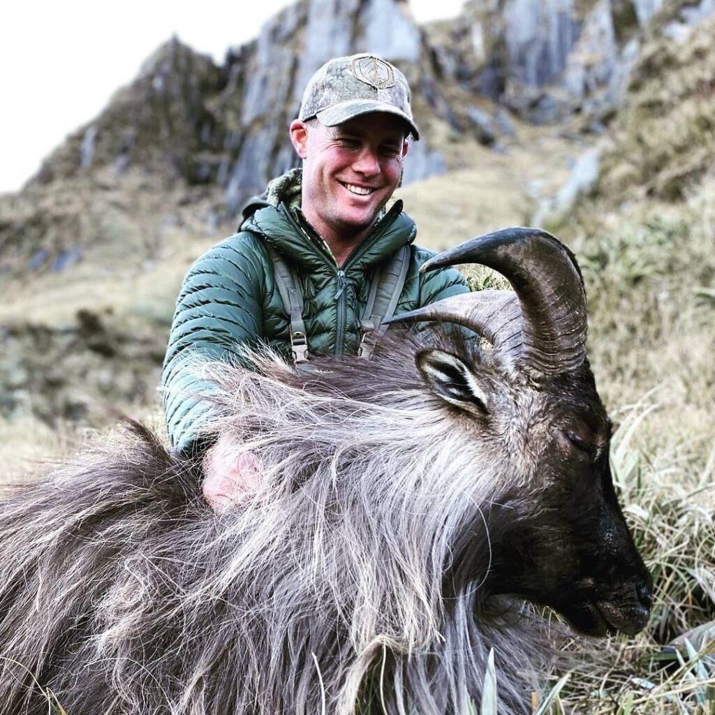 south island new zealand tahr hunt guided hunts outfitters nz (2)