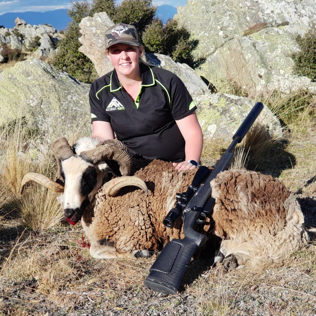 ram hunt south island new zealand hunting outfitters nz