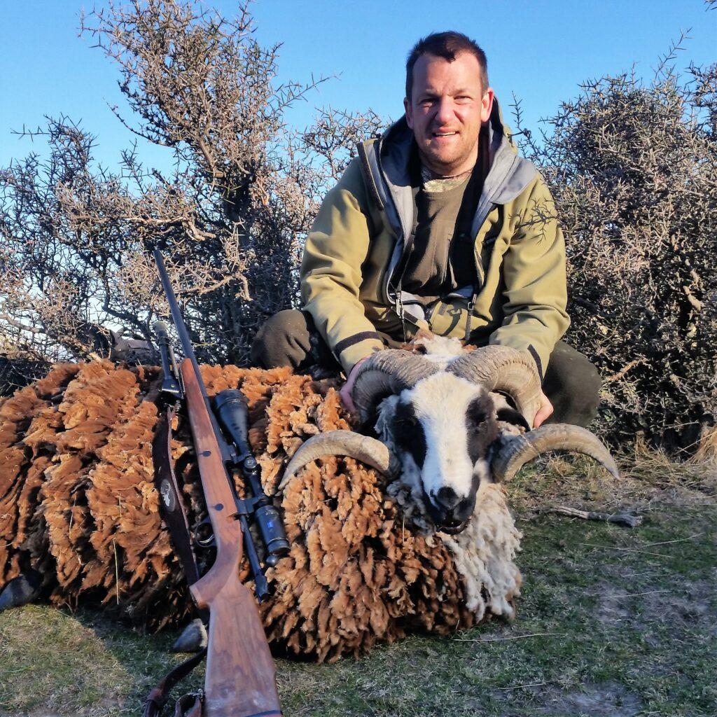 new zealand hunting adventures arapawa ram hunting nz elk goat pig wallaby hunting guides south island