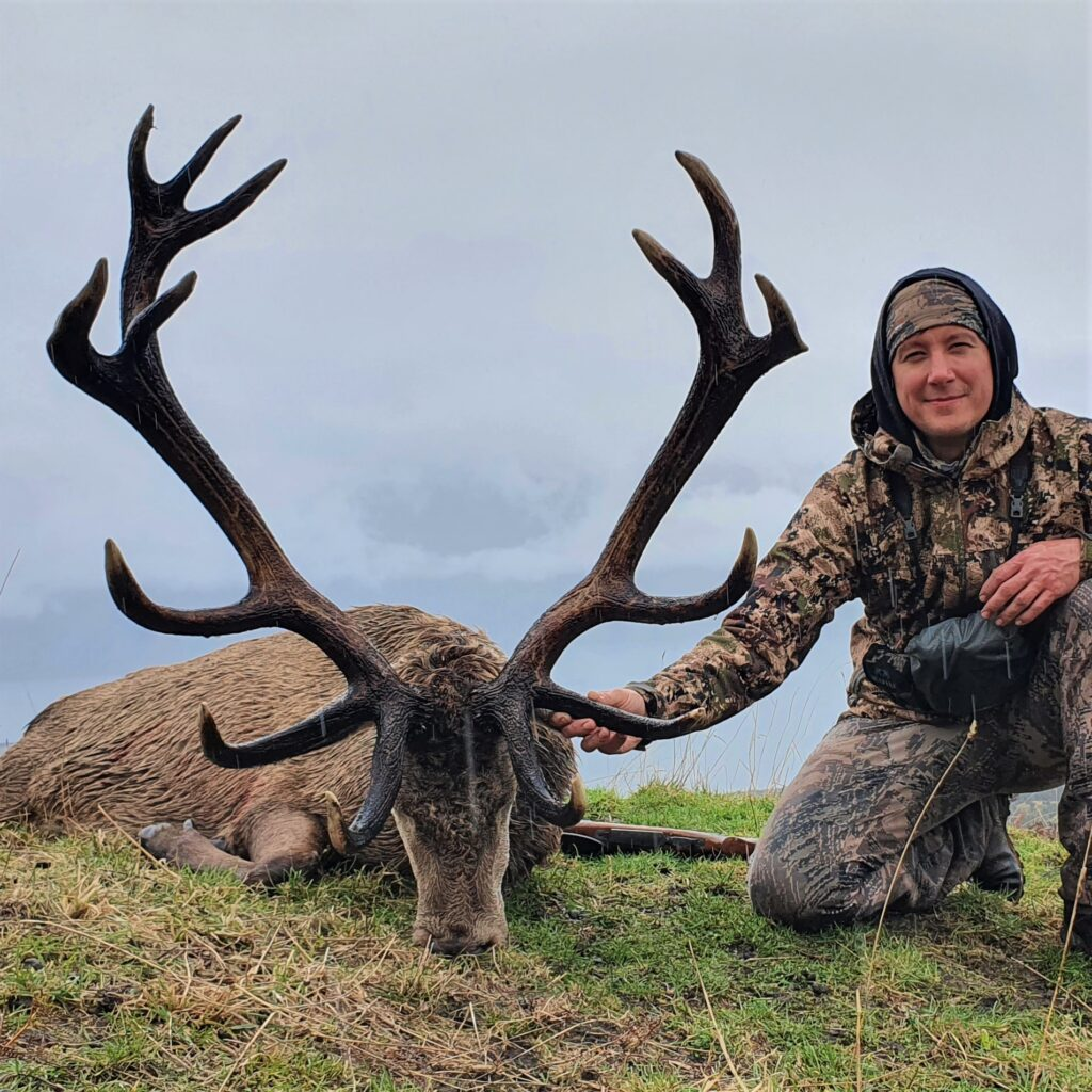 best red stag hunting in New Zealand