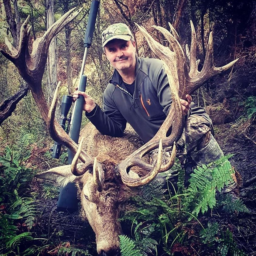red stag hunting in new zealand gold class
