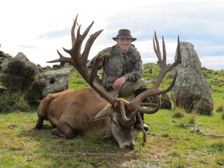 red stag new zealand hunting outfitters Otago