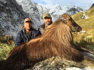 New Zealand Bull Tahr Huntingwww.trophyhunting.co.nz
