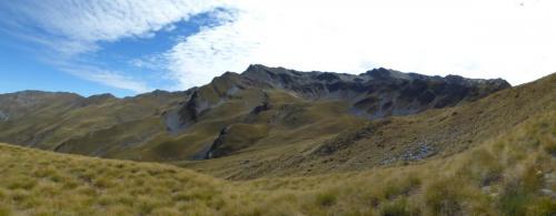 New Zealand Red Stag#huntnewzealandinfo@trophyhunting.co.nz